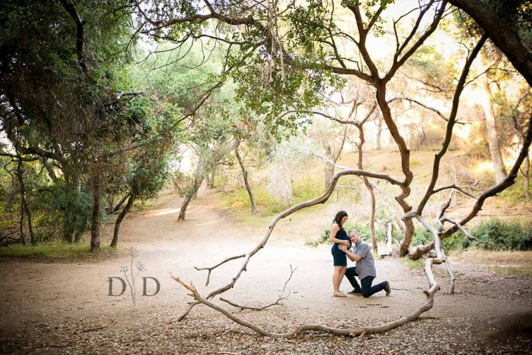 {H} Los Angeles Maternity Photography in San Dimas & Covina