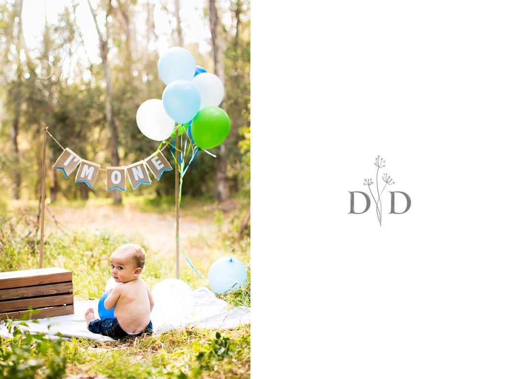 First Birthday Photos Setup