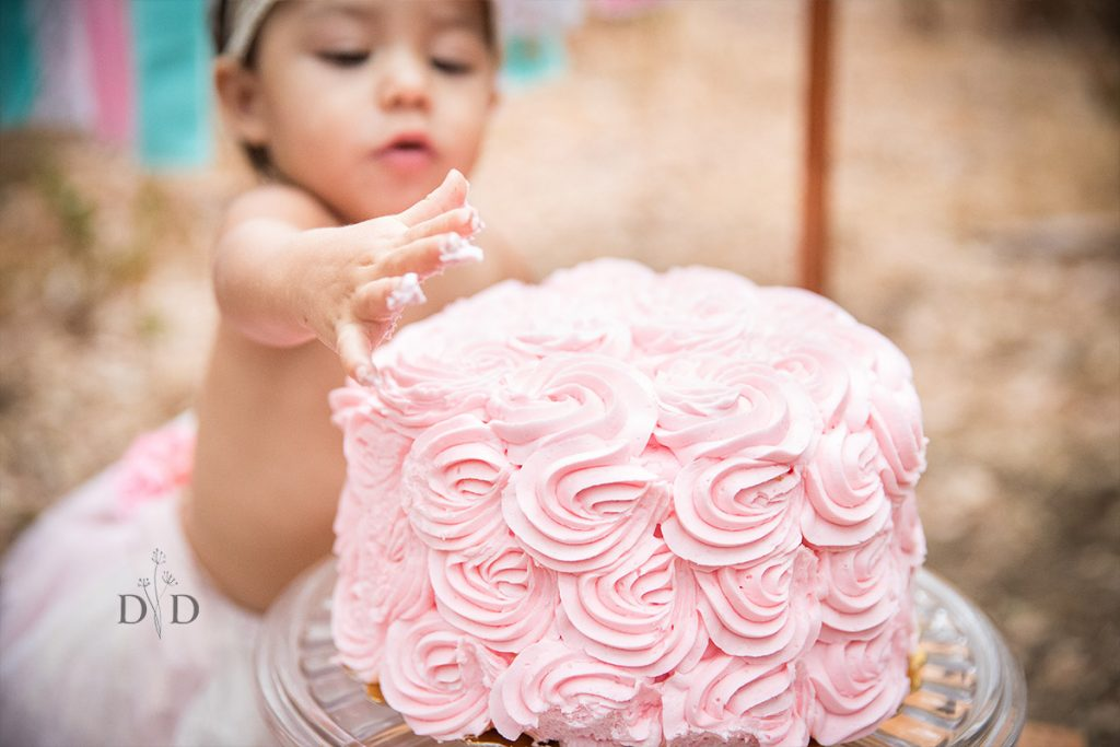 Pink Cake Smash, First Birthday