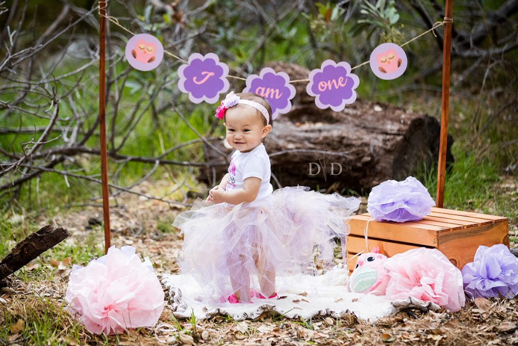 First Birthday Photos Baby Girl