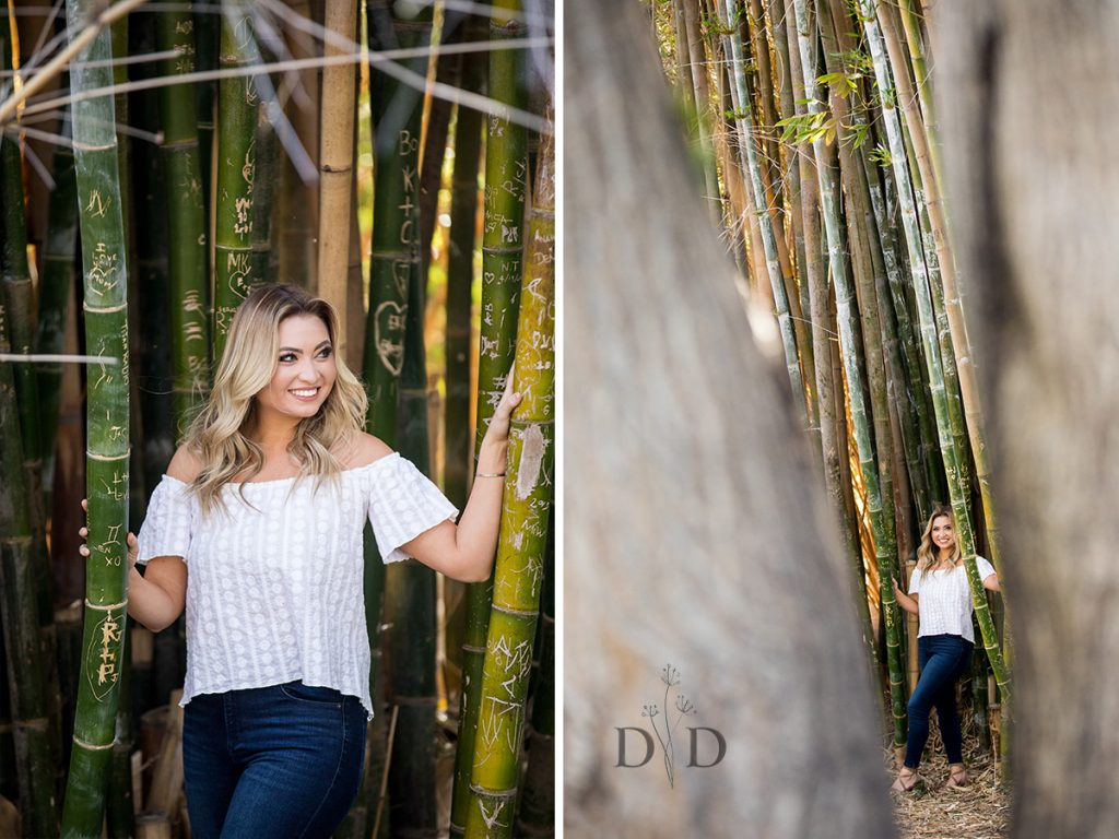 Portraits with a Bamboo Forest
